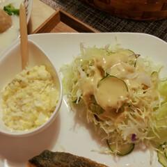 シチュー/肉団子/秋鮭/秋 秋鮭のムニエル🍽  昨晩の鍋で余った肉団…