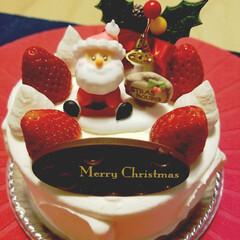 クリスマスパーティー/クリスマス 今年も不評のポテトサラダツリー作っちゃい…(3枚目)