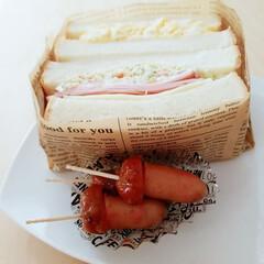 お昼が楽しみになるお弁当/サンドイッチ弁当 今日のお昼ご飯☺️  持って🥪お仕事💪 …