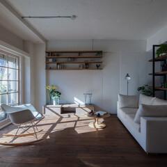 ナチュラル/おしゃれ/DIY/無垢材/吸放湿/防音/... 断熱、遮音効果の高い内窓を採用したリビン…