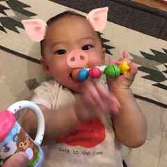 癒し💗/甥っ子/6ヶ月💫 甥っ子くん👶💙6ヶ月💫💫 そろそろ本格的…