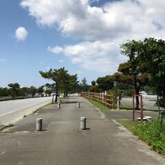 5月から/新年号/令和/沖縄そば/ランチ/そば/... なんの迷いもなく教習所の送迎バスに乗り …