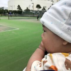 テニス/4カ月/甥っ子 甥っ子くん👶の大好きな、 パパとママのテ…