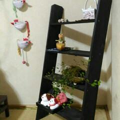 和室/ラダー 妹のお友だちがラダーを作ってくれました。…