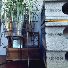 リノベーション/観葉植物/テレビ台/ブロック/リビング/無印良品 テレビ台はブロックで作りました。