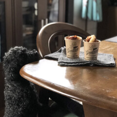 キッチン/紙コップアイデア/セリア/おうちカフェ/Instagram @maaco.uw/楽天ROOM maaco/... うちの愛犬も美味しい匂いには負けちゃうみ…