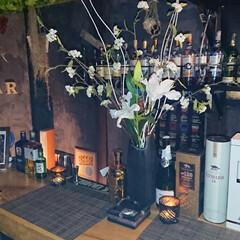 カクテル/ウィスキーグラス/ウィスキー/お酒/Bar/ポームバー/... (3枚目)