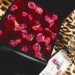 薔薇/プレゼント BIRTHDAY PRESENT💕🎁 薔…