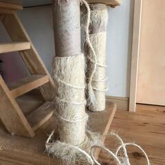 キャットタワー/愛猫 ボロボロのキャットタワーの爪とぎ柱。 気…