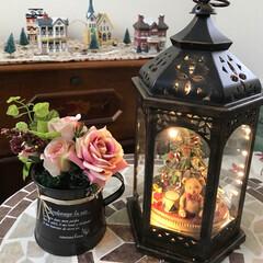 クリスマス/ニトリのフェイクフラワー/クリスマスディスプレイ/玄関ホール 可愛い小物雑貨が大好き♡ 玄関にちょこっ…