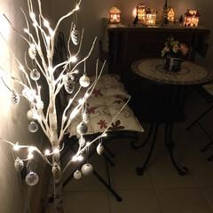 クリスマス/ニトリのフェイクフラワー/白樺ツリー/ライトアップ/玄関ホール/テーブルセット 玄関ホール。 夜はタイマーでライトアップ…