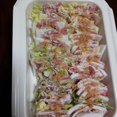 グルメ/フード/おうちごはん BRUNOをつかい 麦豚と白菜のミルフィ…(1枚目)