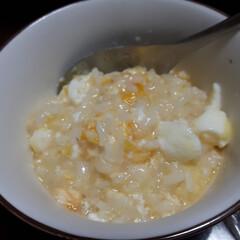 グルメ/フード/おうちごはん BRUNOをつかい 麦豚と白菜のミルフィ…(5枚目)