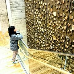 縄文時代/青森市/三内丸山遺跡/おでかけ 新展示収蔵施設。縄文ビックウォール。吹き…