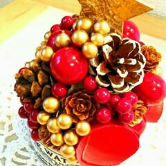 まつぼっくり/手作り/冬インテリア/クリスマスツリー/ハンドメイド/雑貨 まつぼっくりなどでミニクリスマスツリー作…