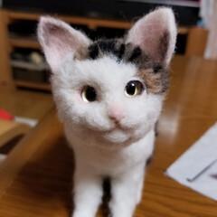 完成/羊毛フェルト猫/羊毛フェルト/ハンドメイド/猫 こんにちは(๑^ ^๑)  コロコロくう…
