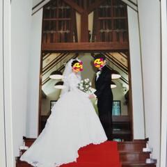 羊ケ丘/記念日/LIMIAペット同好会/にゃんこ同好会 本日、23回目の結婚記念日を迎えました🤗…
