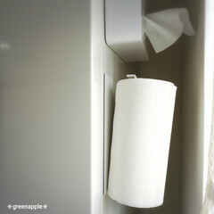 山崎実業 YAMAZAKI 収納 マグネットキッチンペーパーホルダー タワー ホワイト おしゃれ かわいい   山崎実業(物干しハンガー、ピンチ)を使ったクチコミ「キッチンペーパーは 冷蔵庫と壁の死角にな…」(4枚目)