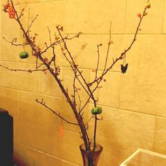 ハロウィン ハロウィン色の実のついた枝に100均アイ…