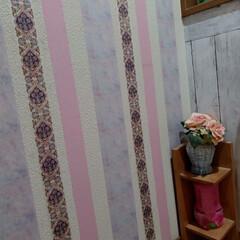 マスキングテープ トイレの壁にマスキングテープをペタペタ❗…