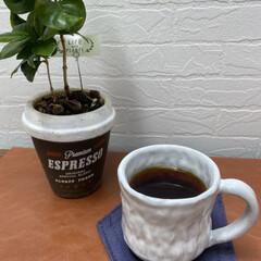 コーヒカップ/コーヒー/陶芸教室/陶芸/カフェみたいな空間/カフェみたいなお家/... シンプルなカップを作りました。 自分で作…