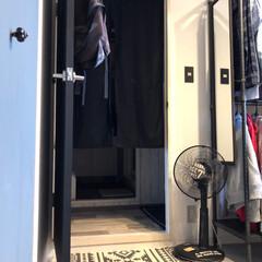 サリュ/クッションフロア/ドアペイント/クローゼットペイント/次男部屋/扇風機リメイク 次男の部屋には早めに扇風機 洗って置いて…