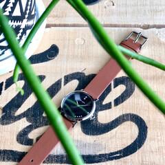 ハワイの星空/手元倶楽部/腕時計倶楽部/腕時計/リアクレア/liakulea liakuleaさんの腕時計をモニター …