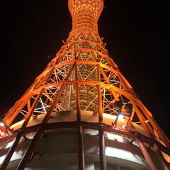 ポートタワー/オリエンタルホテル/ハーバーランド/三宮/NIKE/エアマックス95/... 祝日は神戸にお買い物&ディナー❤️ 成人…