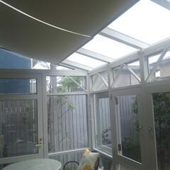 サンルーム/コンサバトリー/遮光/ロールスクリーン/傾斜/傾斜タイプ/... サンルームの暑さ対策に遮光ロールスクリー…