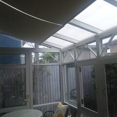 コンサバトリー/サンルーム/傾斜/遮光/ロールスクリーン サンルームは暑い!傾斜の遮光ロールスクリ…