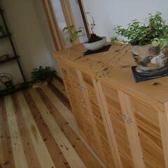 杉/下駄箱/家具/オダ工務店/職人/手造り/... 杉で製作した下駄箱。木目が美しいです。地…