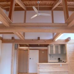 平屋/家/リビング/小屋組/木/職人/... 平屋の家はリビングに小屋組を意匠に出来ま…