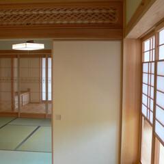 木/紙/加工/素材/職人/手仕事/... 木と紙で造る家。柔らかで加工がしやすい素…