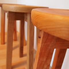 スツール/椅子 /イス