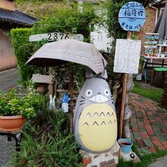 台風被害/住まい 台風24号被害(^_^;))) 傘しまう…