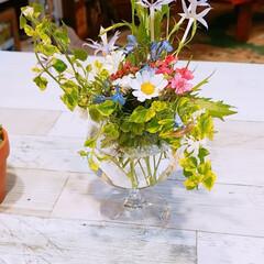 頑張ろう/おはよう おはようございます☀️🙋❗ 庭に咲いてる…