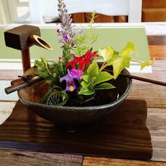 生け花 湯布院で買ったかわいい 生け花セットに早…