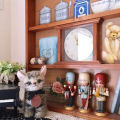 くるみ割り人形/騙し絵/トールペイント/お気に入り/猫のぬいぐるみ 新入りのにゃんこ(*ΦωΦ*)