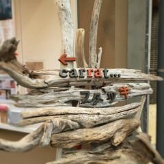 アルファベットオブジェ/テラコッタ/流木看板/流木/看板/サイン 造園屋さんが制作した流木を使ったナチュラ…