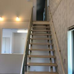 隠れ部屋/新築/建築 屋根裏部屋への階段 憧れの隠れ部屋