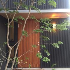 ガデリウス/木製玄関ドア/黒 黒い外壁の力強さと調和する温かみのある玄…