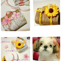 facebook/Instagram/リングピロー/リングドッグ/結婚式/オーダー受付中/... 私は、犬似顔絵だけじゃなくて、、、😅  …(1枚目)