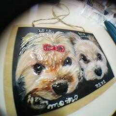 こっこのお店/犬似顔絵/うちの子似顔絵/minne/ラクマ/メルカリ/... ヨークシャちゃんだよ😁  今回は、プレゼ…(5枚目)