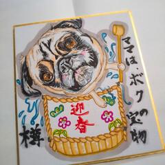 ラクマ/メルカリ/minne/オーダー/猫似顔絵/犬似顔絵/... パグちゃん似顔絵ミニ色紙です。樽ちゃんで…