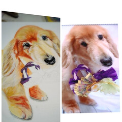 犬似顔絵/minne/ラクマ/メルカリ/うちの子似顔絵オーダー/似顔絵/... 暑いですね、f(^^;  あまりの暑さに…(3枚目)