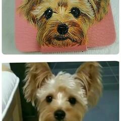 犬用アクセサリー/犬似顔絵/オーダー/ベット似顔絵/こっこのお店/Instagram/... 完成~✏️  カードケースに描きました。…