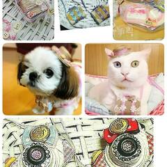 ミニチュアトランクセット/ミニチュアカメラワン/犬猫旅グッツ/minne/ラクマ/メルカリ/... セール開始~✌️  こちらから受付中~ …