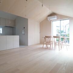 木/フローリング/ミニマル/リビングダイニング 小さな家の中の小さな家