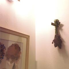 ラベンダー/玄関 なかなかいい感じ✨✨