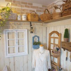緑のある暮らし/壁面飾り/ナチュラルインテリア/雑貨/飾り棚/板壁DIY/... 木のぬくもりを感じる板壁と お気に入りの…